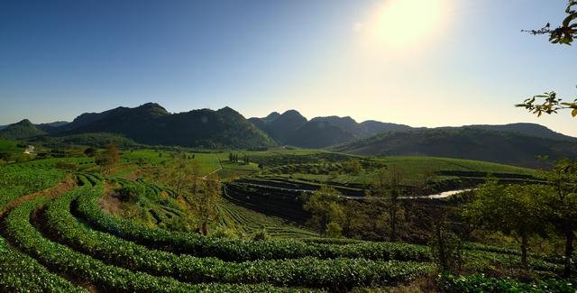积庆里红茶谷8
